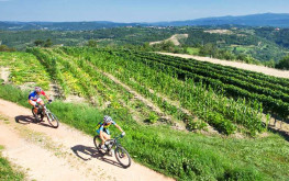 Cycling in Istria, explore coastal and inner parts of Istria